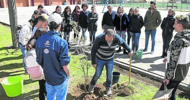 Pajarillos planta tantos árboles como goles mete el jugador de hockey Olmo Ercilla