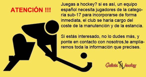 Necesitamos jugadores de hockey patines!!!!
