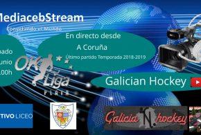 Último partido OK Liga Plata 2018-2019                           Deportivo Liceo-CP Taradell